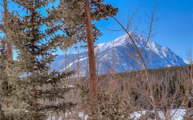 Buffalo Ridge/Village Condo 201 - photo 17