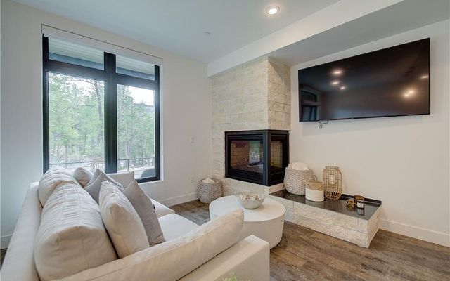 River West Condos 916 - photo 2