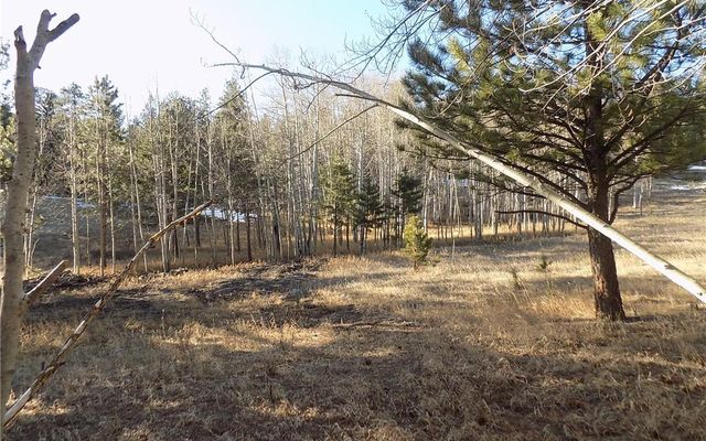 987 Pulver Road - photo 19