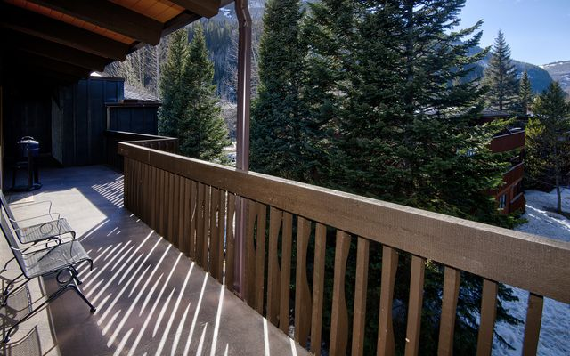 Vail Racquet Club Condos 2-9 - photo 4