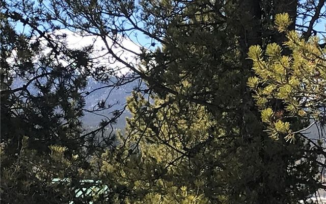 891 Spruce Drive - photo 2