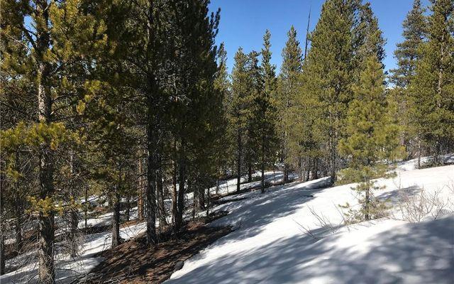 891 Spruce Drive - photo 4