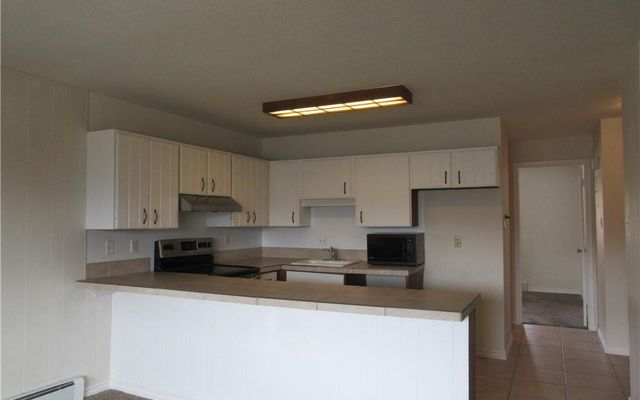 Dillon Valley East Condo 302 - photo 5