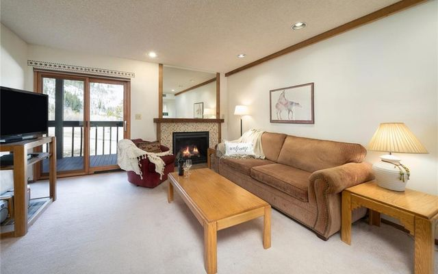 Mountain Side Condo 161 - photo 4