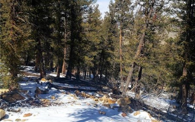 Tbd Middle Fork - photo 18