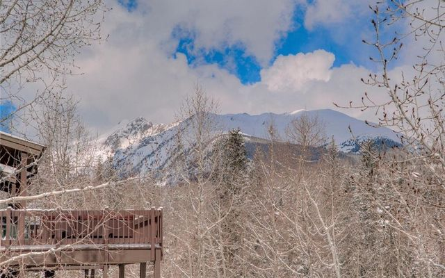 41 Twenty Grand Court #41 SILVERTHORNE, CO 80498