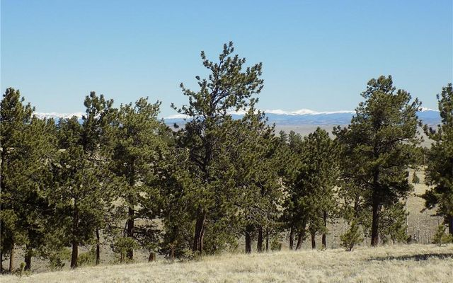 10617 Ranch Road HARTSEL, CO 80449