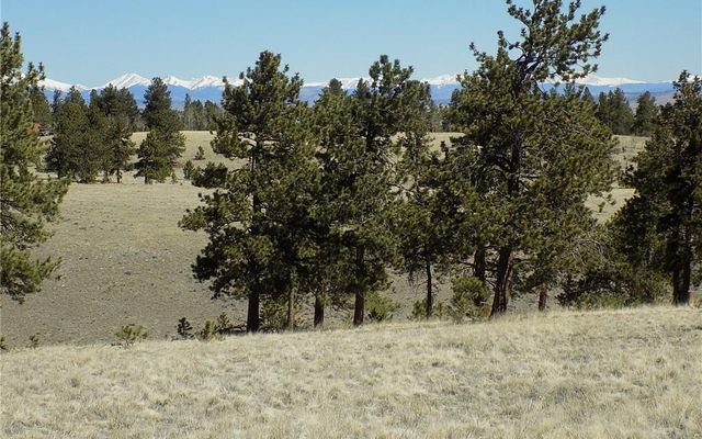 10617 Ranch Road - photo 4
