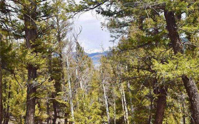 TBD Middle Fork Vista FAIRPLAY, CO 80440