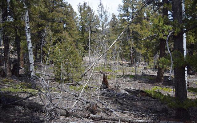 Tbd Middle Fork Vista - photo 12