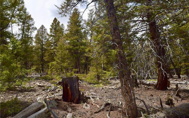 Tbd Middle Fork Vista - photo 13