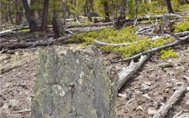 Tbd Middle Fork Vista - photo 16