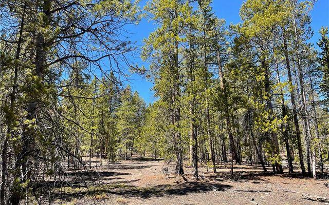 957 & 975 Sequoia Drive - photo 10