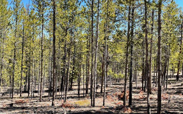 957 & 975 Sequoia Drive - photo 5