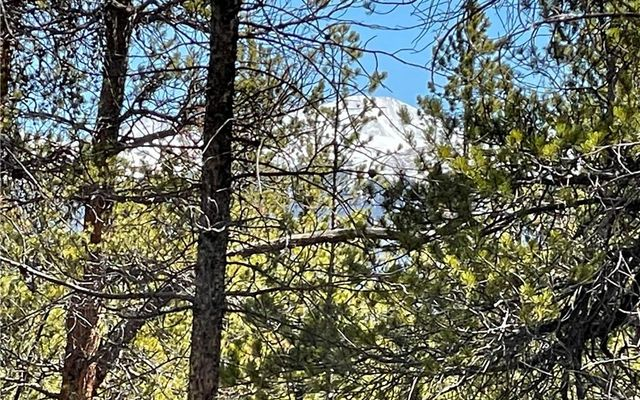 957 & 975 Sequoia Drive - photo 6