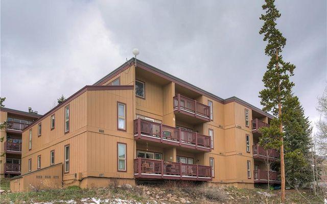 Buffalo Woods Condo 217 - photo 29