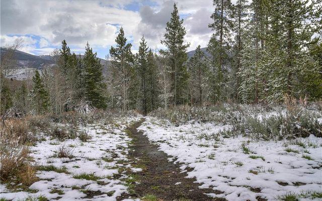 Buffalo Woods Condo 217 - photo 32
