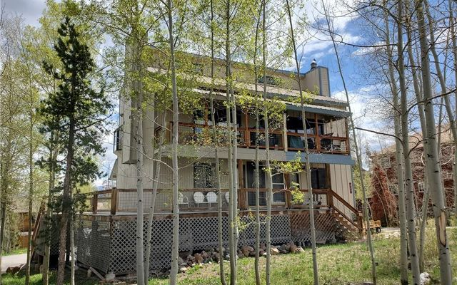 222 North Side Circle SILVERTHORNE, CO 80498
