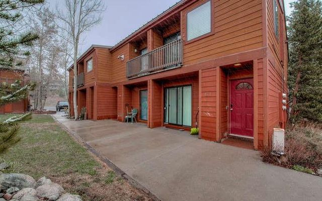 Pitkin Townhomes c3 - photo 2