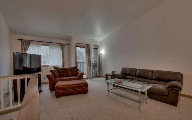 Pitkin Townhomes c3 - photo 3