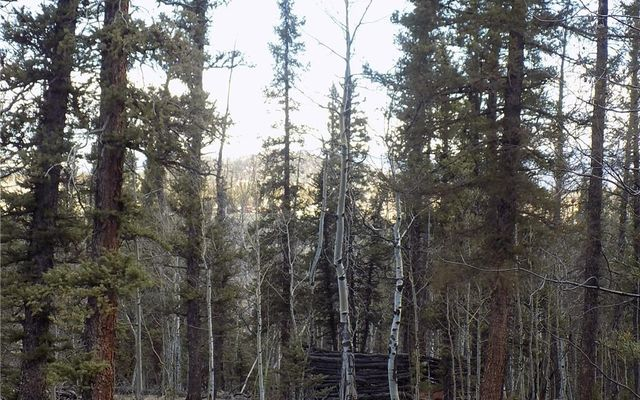 50 Nez Perce Road - photo 11