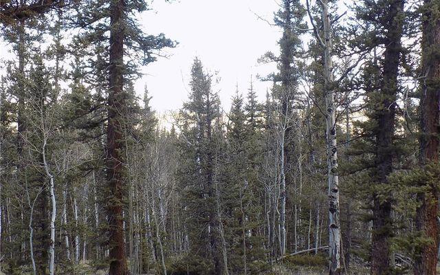 50 Nez Perce Road - photo 12