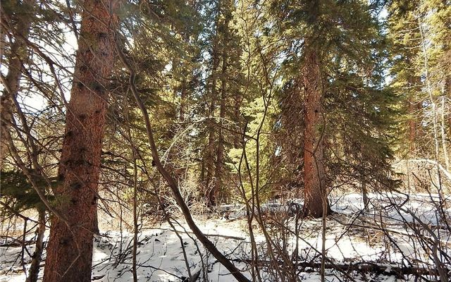 589 Mine Dump Road - photo 18