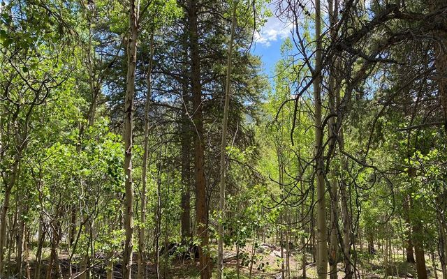 2564 Empire Valley Drive LEADVILLE, CO 80461