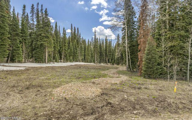 700 Granite Springs Trail - photo 1