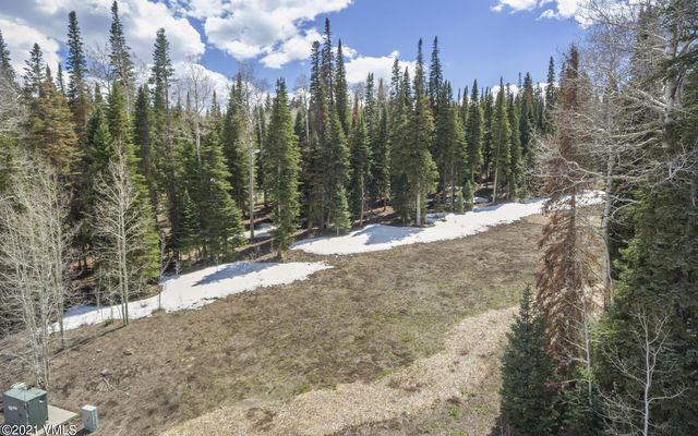 700 Granite Springs Trail - photo 12