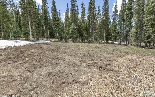 700 Granite Springs Trail - photo 6