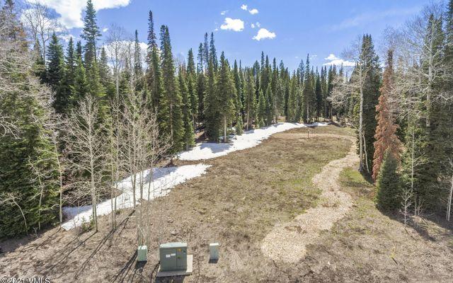 700 Granite Springs Trail - photo 8