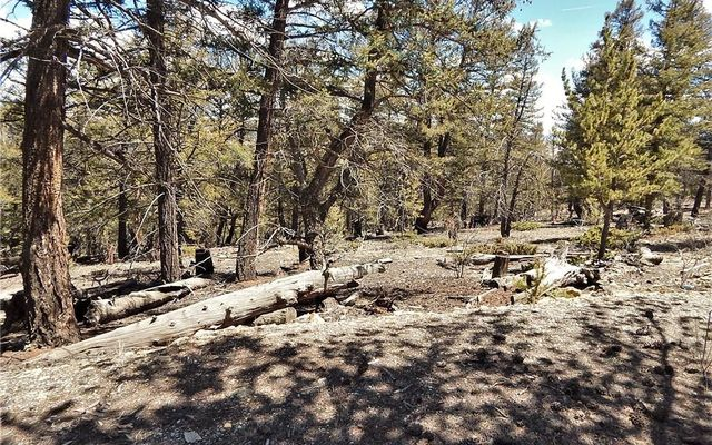 0 Middle Fork Vista - photo 11