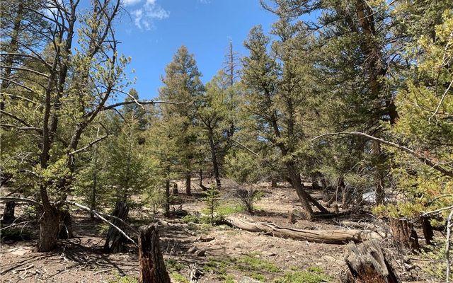 2773 Middle Fork Vista - photo 3