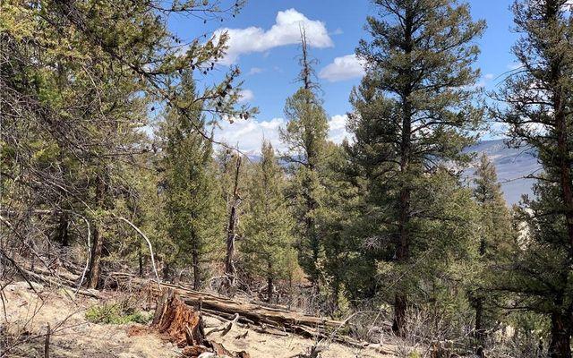 2773 Middle Fork Vista - photo 4