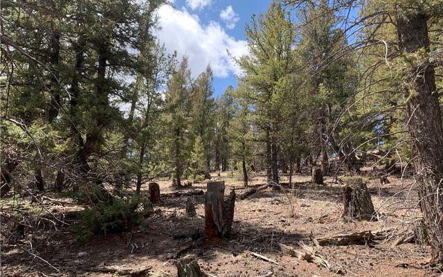 2773 Middle Fork Vista - photo 6