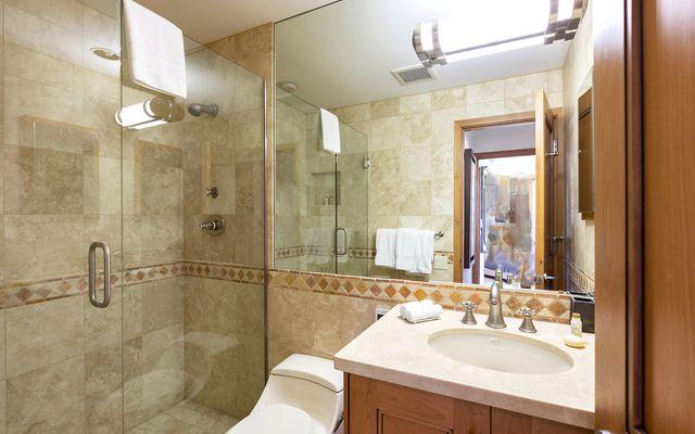 Vail Spa Condominiums 326 - photo 13