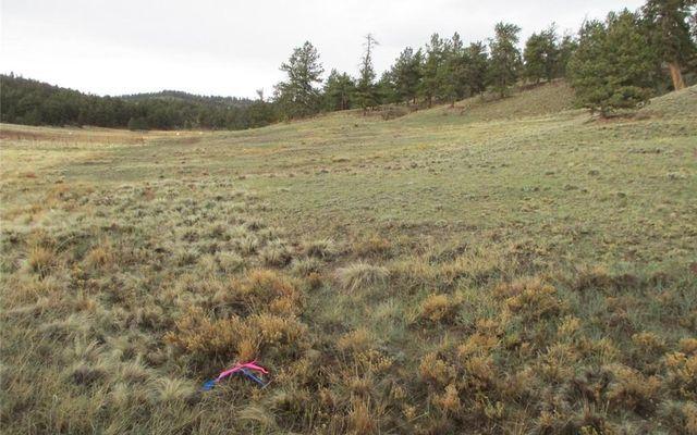 1617 Navajo Trail HARTSEL, CO 80449