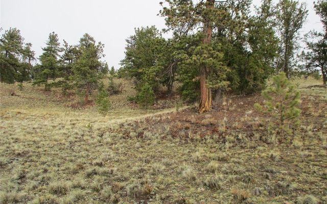 1617 Navajo Trail - photo 10