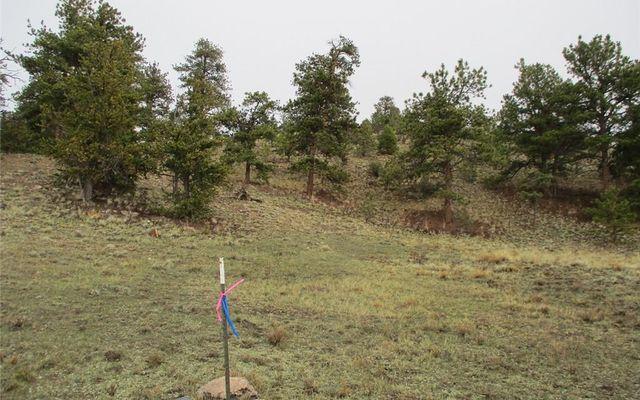 1617 Navajo Trail - photo 11