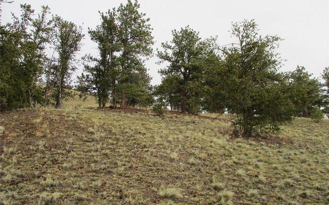 1617 Navajo Trail - photo 13