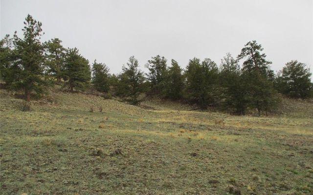 1617 Navajo Trail - photo 15