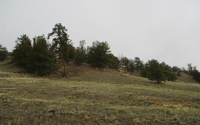 1617 Navajo Trail - photo 5