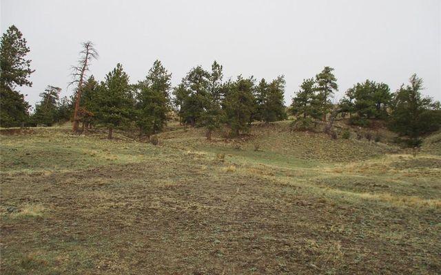 1617 Navajo Trail - photo 6