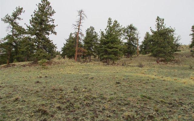 1617 Navajo Trail - photo 7