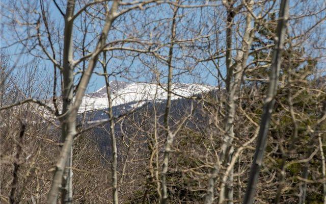 11 Alpine Court - photo 8