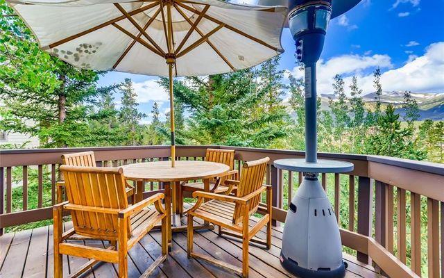 313 S Gold Flake Terrace - photo 12
