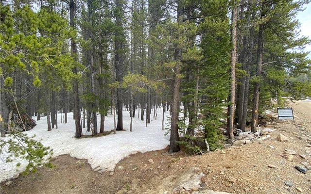 000 Lower Forest Road IDAHO SPRINGS, CO 80452