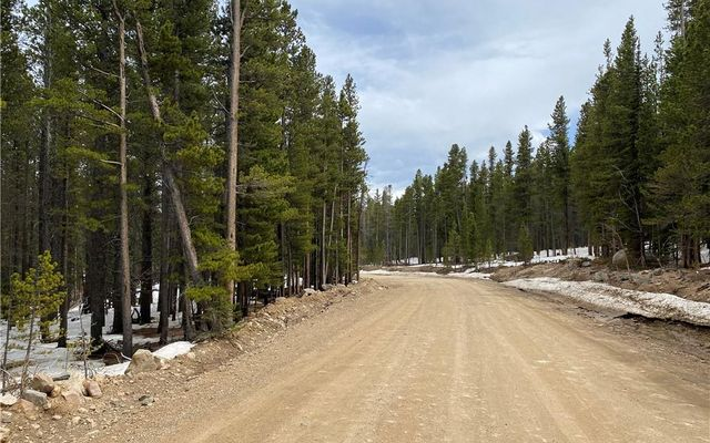 000 Lower Forest Road - photo 5