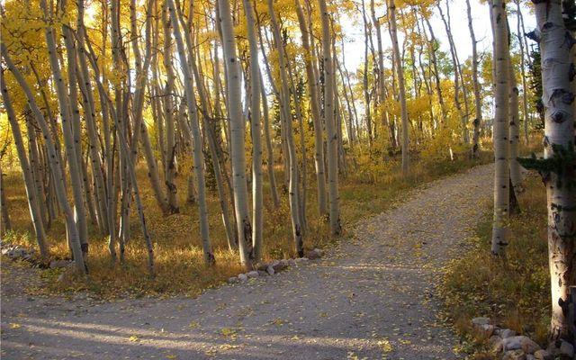 2884 High Creek Road - photo 31